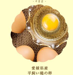 愛媛県産平飼い鶏の卵
